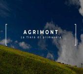 نمایشگاه اختصاص داده شده به کشاورزی کوهستانی AGRIMONT 2019 ایتالیا
