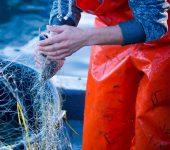 نمایشگاه صنعت ماهیگیری ITECHMER LORIENT 2019 فرانسه