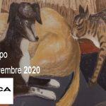 ویزای نمایشگاه عتیقه جات و کارهای هنری ANTICA NAMUR 2020 بلژیک