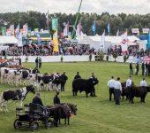نمایشگاه کشاورزی، جنگلداری و شکار MELA 2021 آلمان